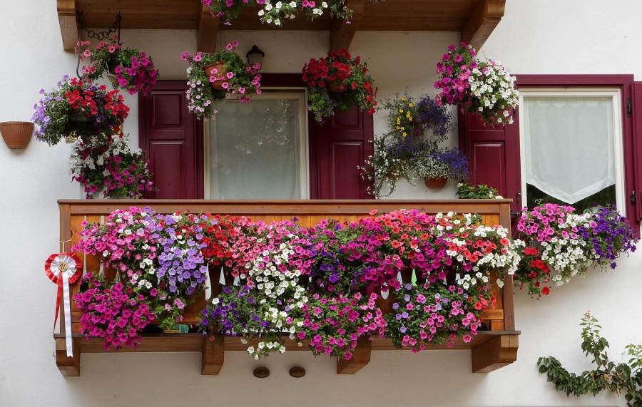 Balcone-fiorito-900x571
